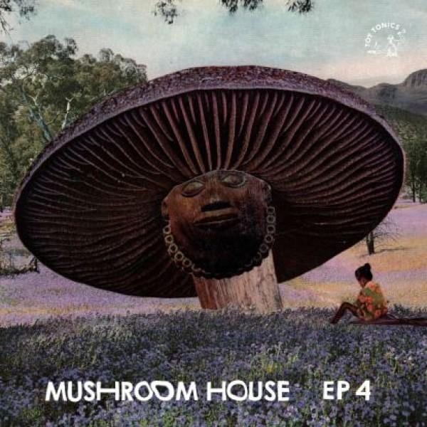 Mushroom House EP 4