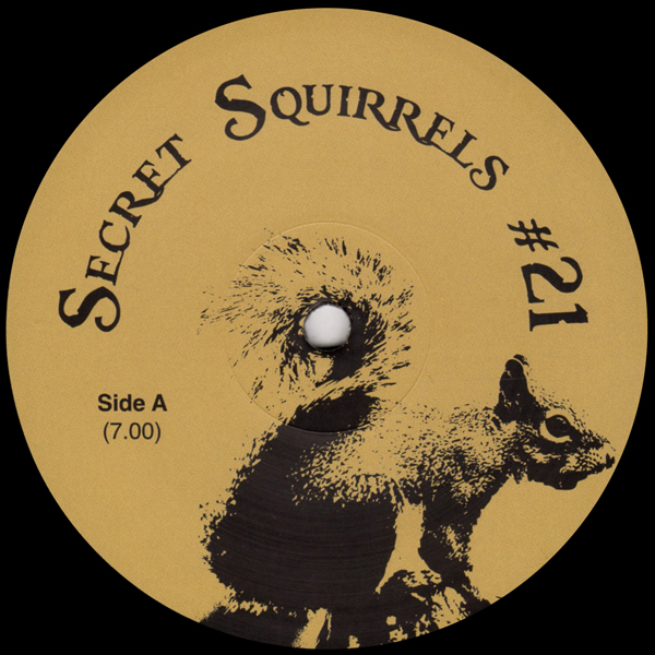 secret-squirrels-secret-squirrels-21-secret-squirrels-cover