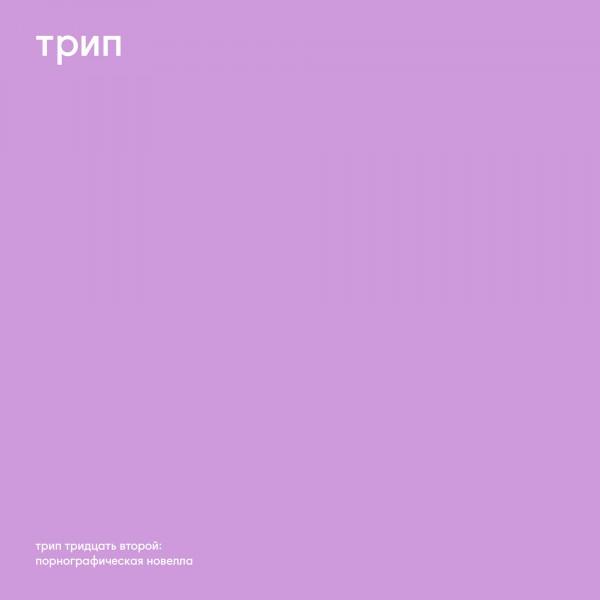 vladimir-dubyshkin-pornographic-novel-trip-cover