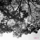 a-sagittariun-oxidize-ep-inc-rvds-remix-couldnt-care-more-cover