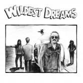 wildest-dreams-dj-harvey-wildest-dreams-lp-smalltown-supersound-cover