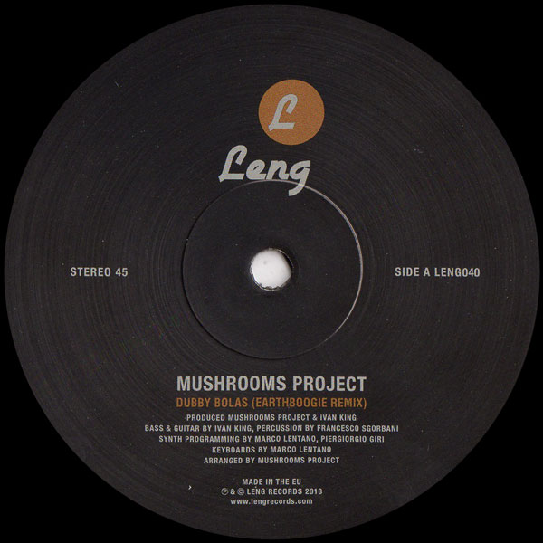 mushrooms-project-earthboogie-dubby-bolas-earthboogie-remix-route-ten-to-interzone-mushroom-project-rework-leng-cover