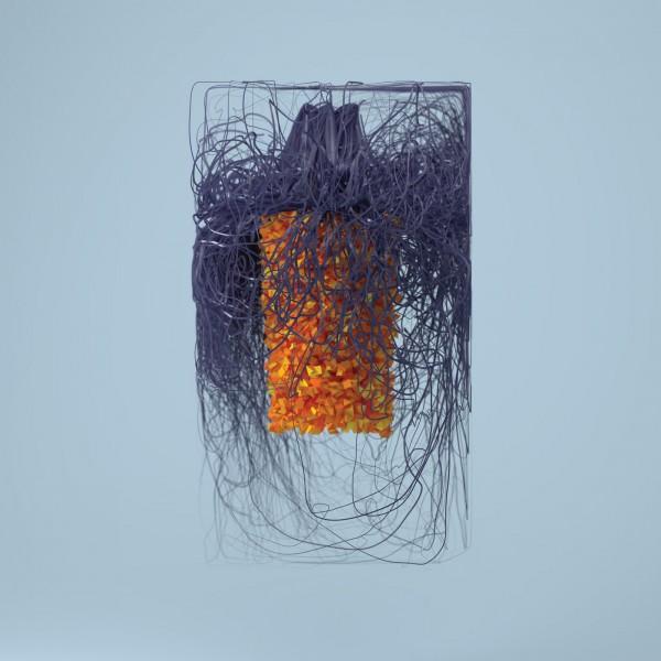 plaid-polymer-cd-warp-cover