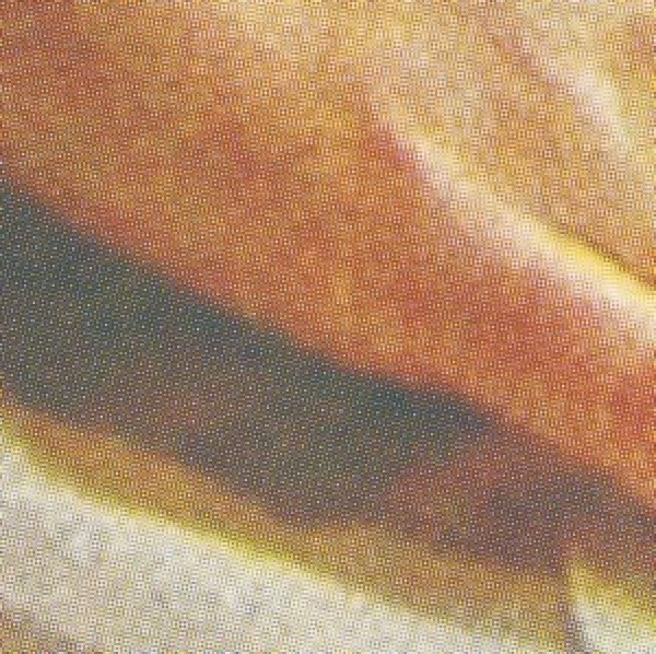 aleksandir-skin-lp-omena-cover