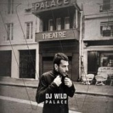dj-wild-palace-cd-w-records-cover