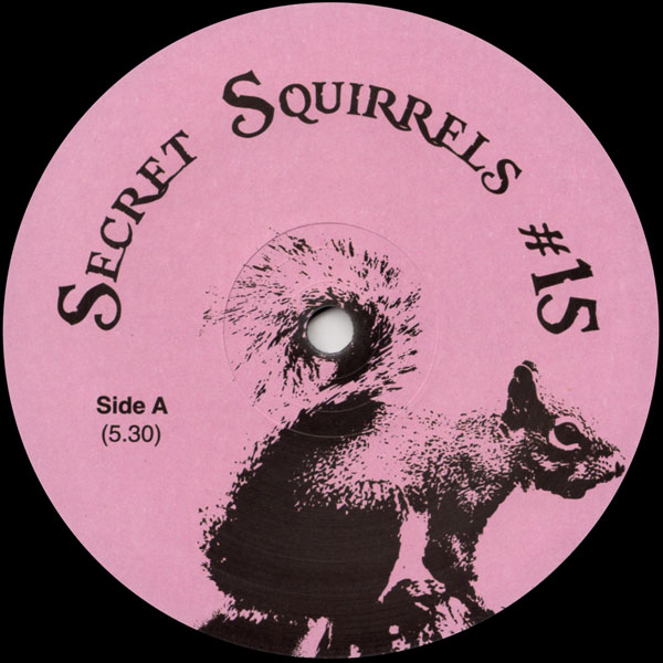 secret-squirrels-secret-squirrels-15-secret-squirrels-cover