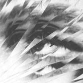 fabio-monesi-pipe-dreams-ep-wilson-records-cover