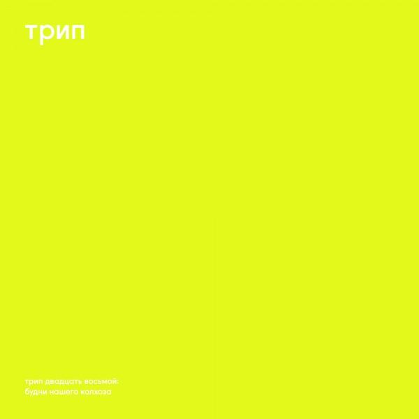 vladimir-dubyshkin-budni-nashego-kolhoza-trip-cover