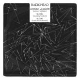 radiohead-morning-mr-magpie-nathan-fake-remix-bloom-harmonic-313-mark-pritchard-remixes-ticker-tape-ltd-cover