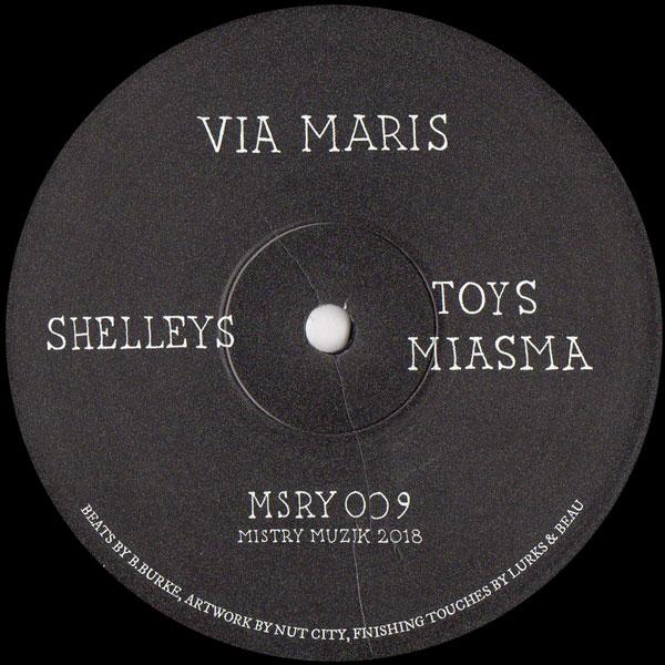 via-maris-shelleys-mistry-cover