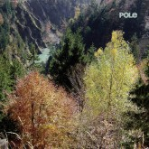 pole-wald-lp-pole-music-cover