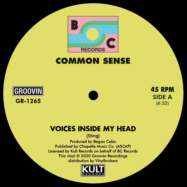 common-sense-voices-inside-my-head-groovin-recordings-cover