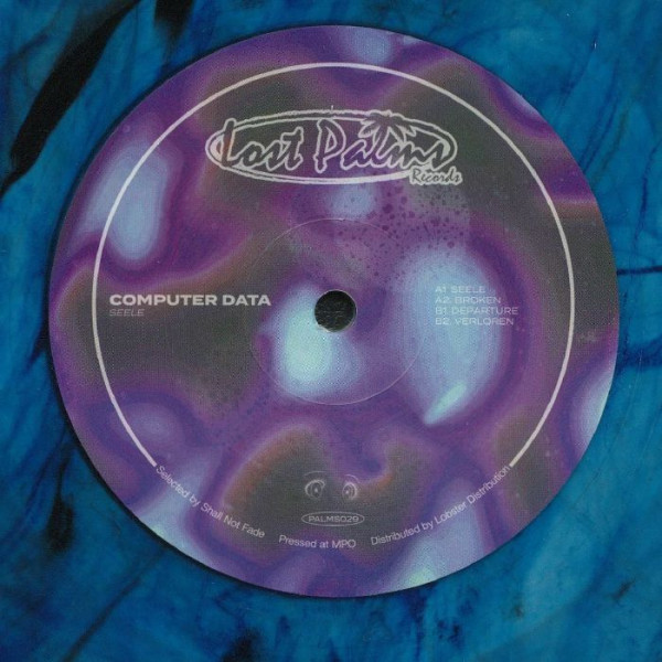 computer-data-seele-ep-blue-marble-vinyl-repress-lost-palms-cover