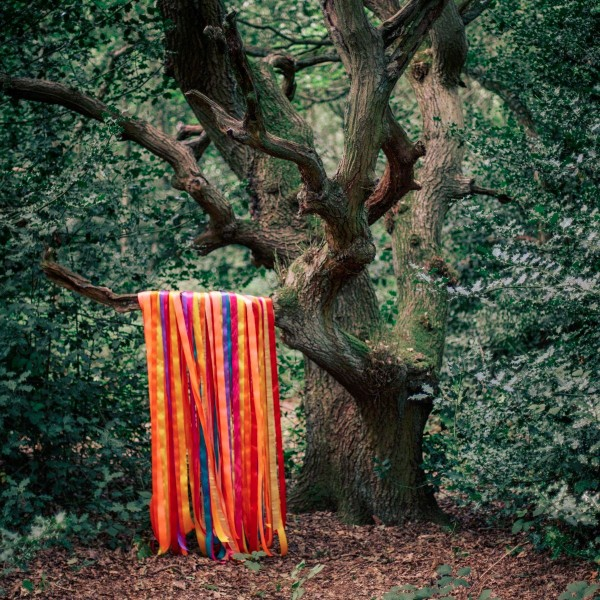 james-holden-the-animal-spirits-the-animal-spirits-cd-border-community-cover