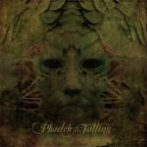 phaeleh-falling-kulture-remix-disfigured-dubs-cover