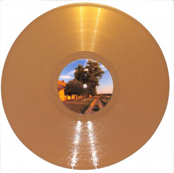 unknown-artist-drgs007-gold-vinyl-drg-series-cover