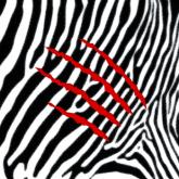 harmonic-313-lion-ft-rikodan-warp-cover