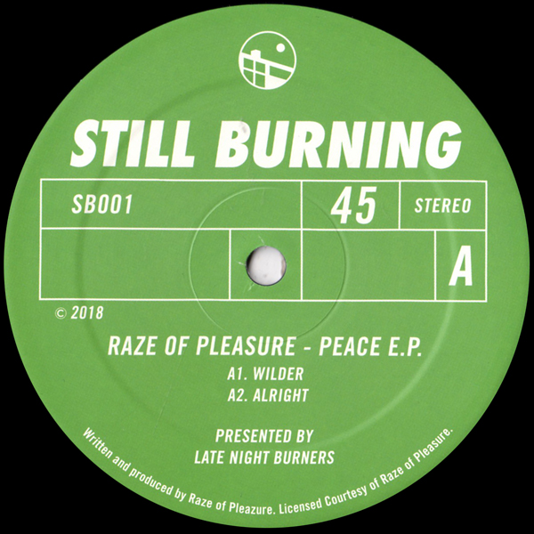 raze-of-pleasure-peace-ep-late-night-burners-cover