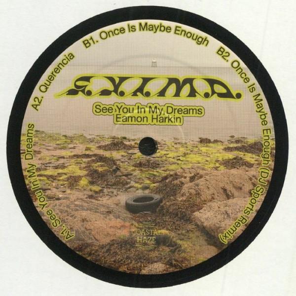 eamon-harkin-see-you-in-my-dreams-dj-sports-remix-coastal-haze-cover