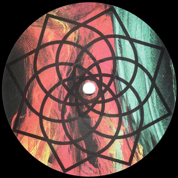 roger-gerressen-heading-in-a-backwards-direction-lp-yoyaku-cover