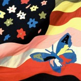 the-avalanches-wildflower-cd-xl-recordings-cover