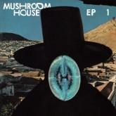 who-made-who-munk-rebolledo-alien-alien-mushroom-house-ep-1-toy-tonics-cover