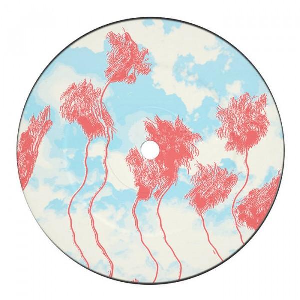 hidden-spheres-waiting-ep-red-vinyl-repress-distant-horizons-cover