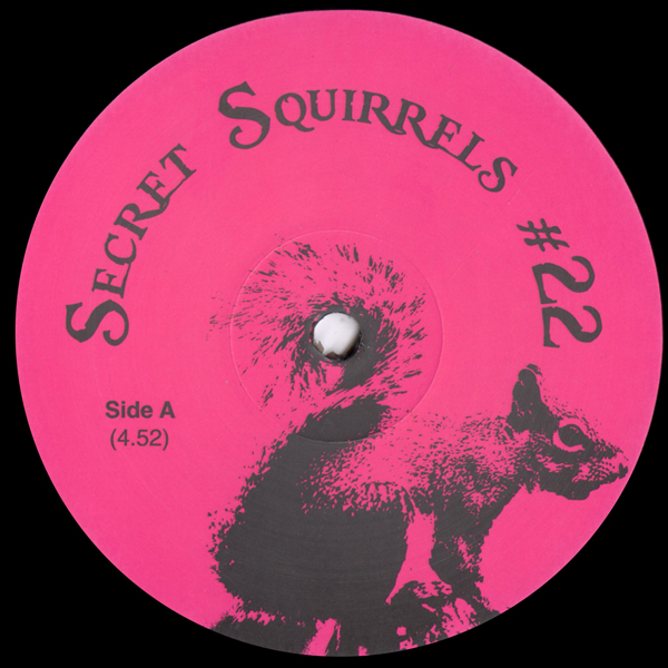secret-squirrels-secret-squirrels-22-secret-squirrels-cover