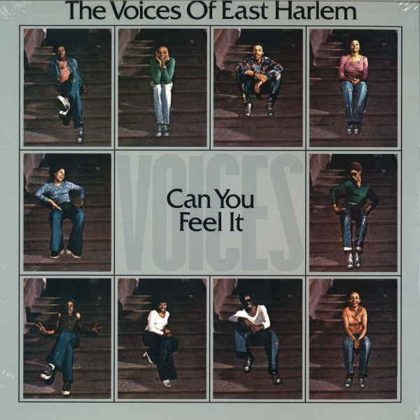 the-voices-of-east-harlem-can-you-feel-it-lp-soul-brother-records-cover